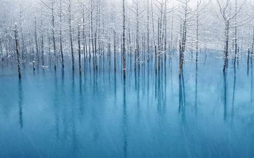 Mountain Lion スクリーンセーバーで使われる画像 青い池