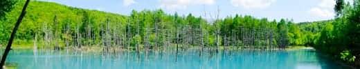 Nikon 1 J2 かんたんパノラマ サンプル写真