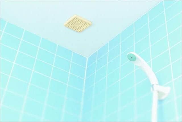 天井に貼り付けた「バイオ お風呂のカビきれい」