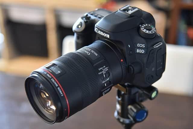 80Dと100mm f2.8Lレンズ