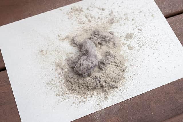 カーペットから吸い出されたゴミと埃