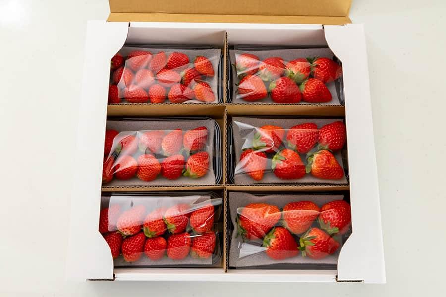 イチゴの量は150g×6パック入り