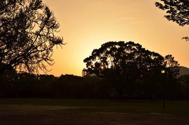 二の丸広場からの夕日