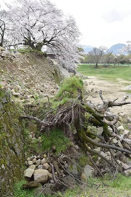 戌亥櫓(いぬいやぐら)の石垣