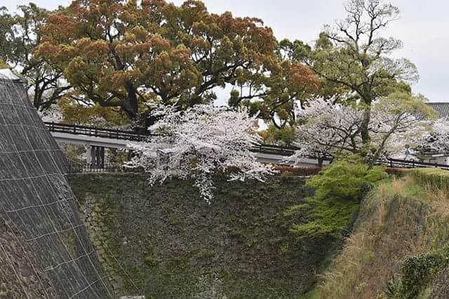 熊本城内へのスロープ