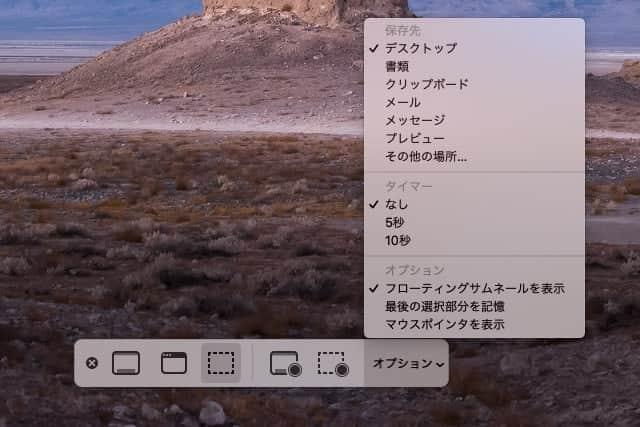スクリーンショット オプションの内容