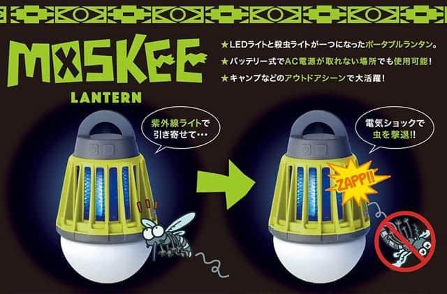 Moskee Lantern 特徴