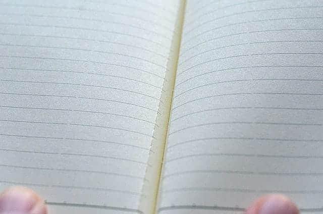 能率手帳ゴールド 罫線が入ったメモ欄 切り取り線あり