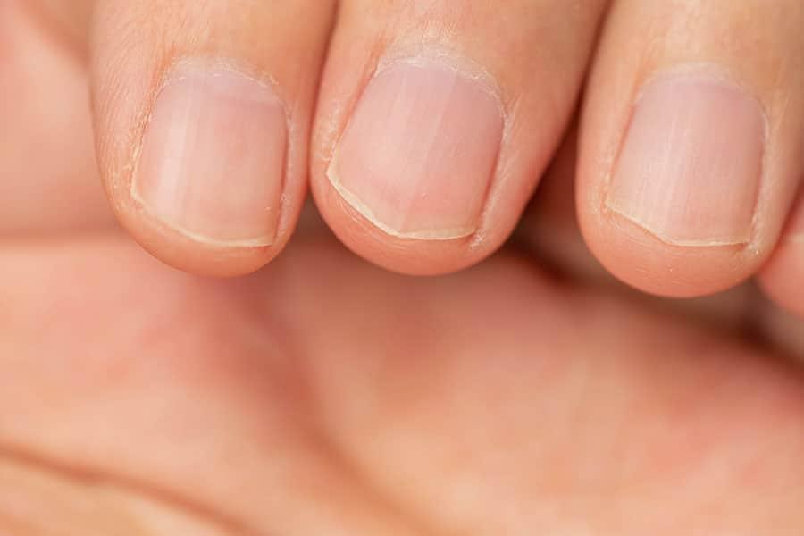 爪を切った指先