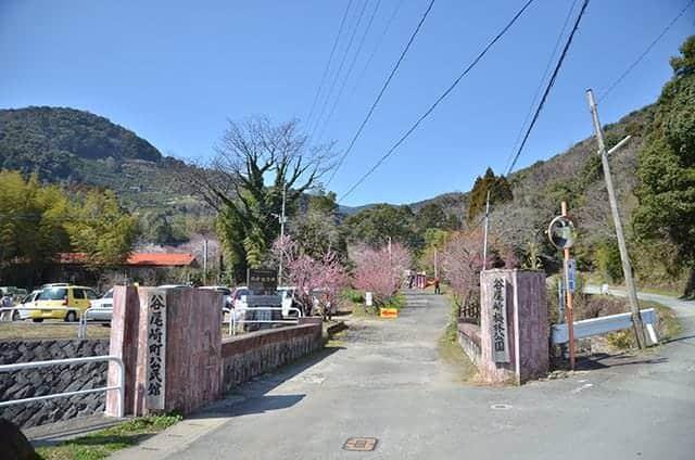 谷尾崎梅林公園の入り口