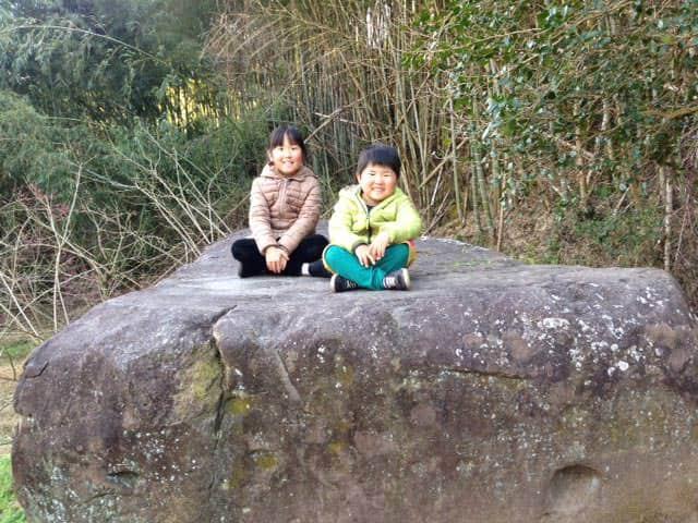 宮本武蔵の座禅石