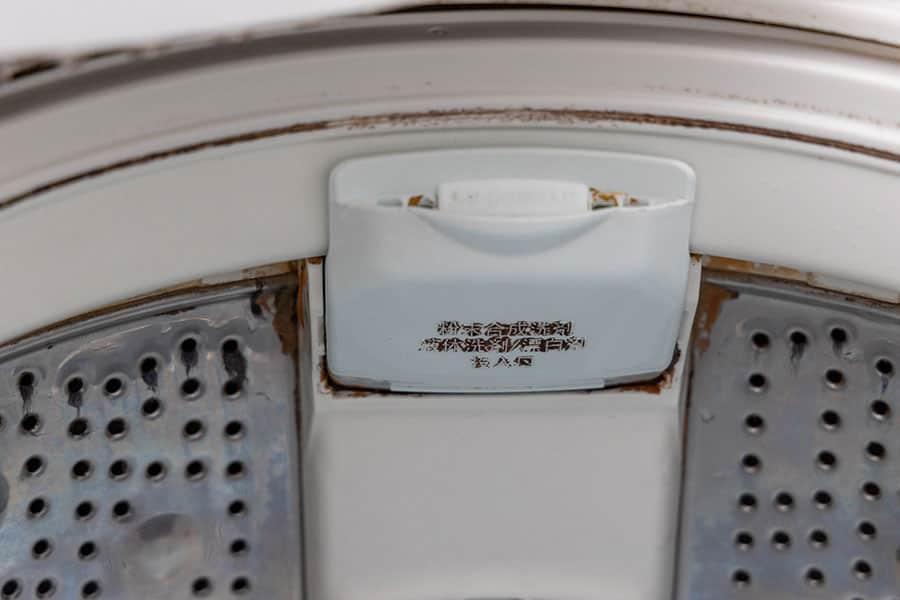 洗濯槽の上部の黒カビ写真