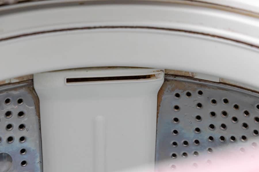 洗濯槽上部の黒カビ